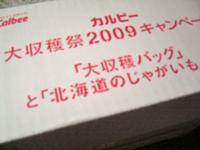 P1100845.jpg